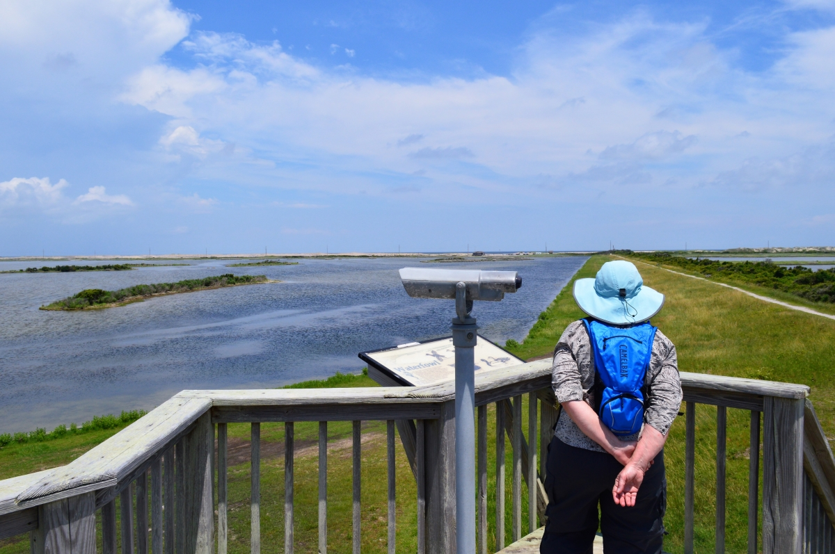 Pea Island National Wildlife Refuge, Hatteras Island, N.C.