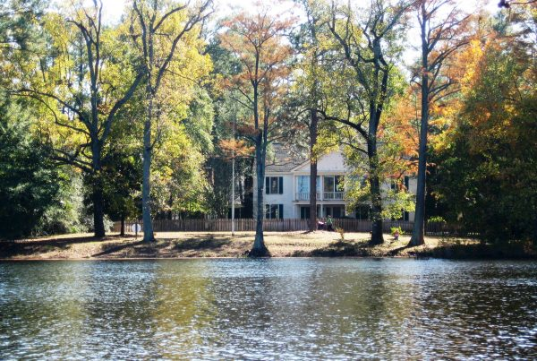 Carvers Creek State Park - Click for More Information