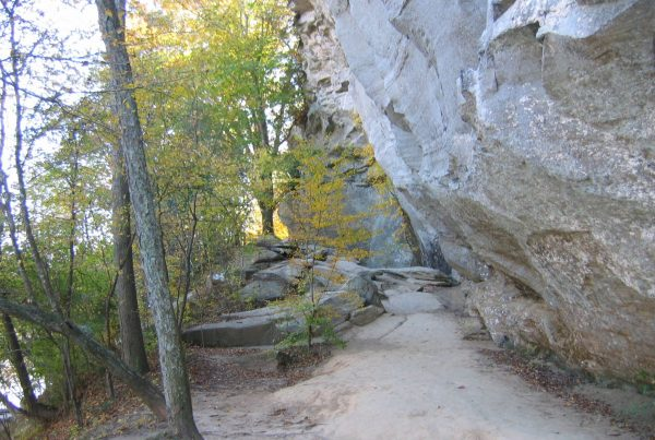 trail at raven rock state park